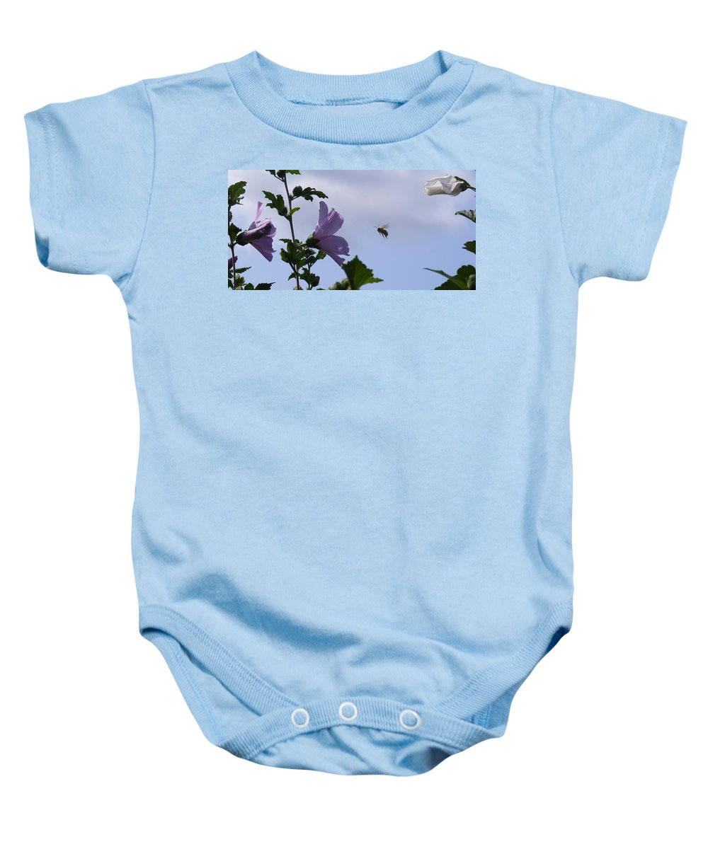 Landscape Baby Onesie featuring the photograph The Landing Strip by Ed Smith