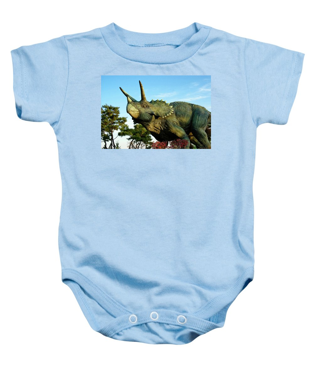 South Korea Baby Onesie featuring the photograph Triceratops by Michele Burgess