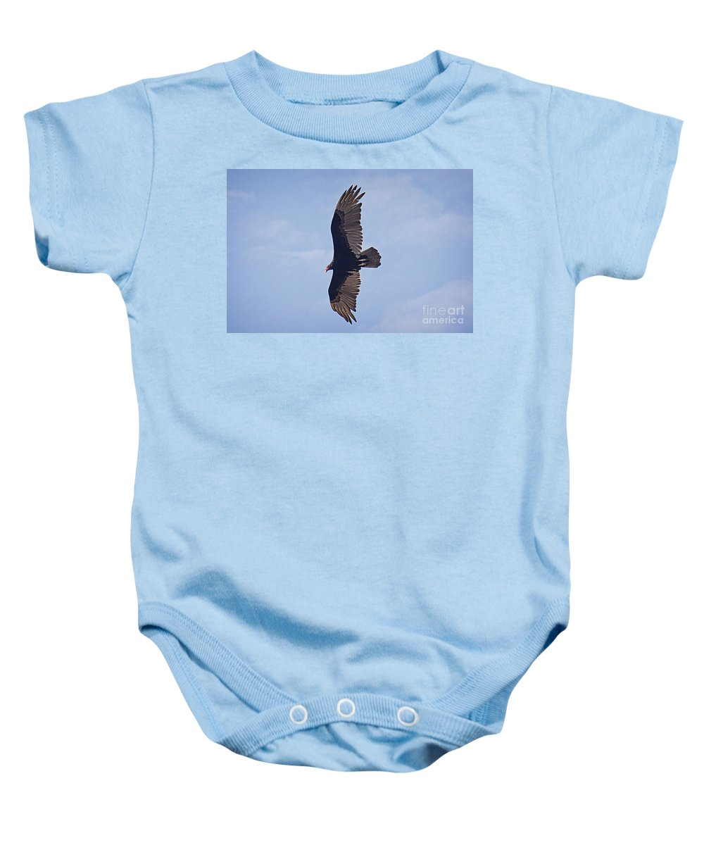 Turkey Vulture Baby Onesie featuring the photograph Turkey Vulture by Bob Hislop
