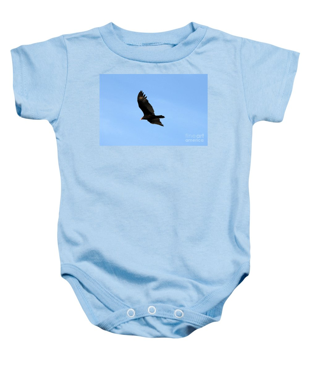 Turkey Vulture Baby Onesie featuring the photograph Turkey Vulture by David Lee Thompson
