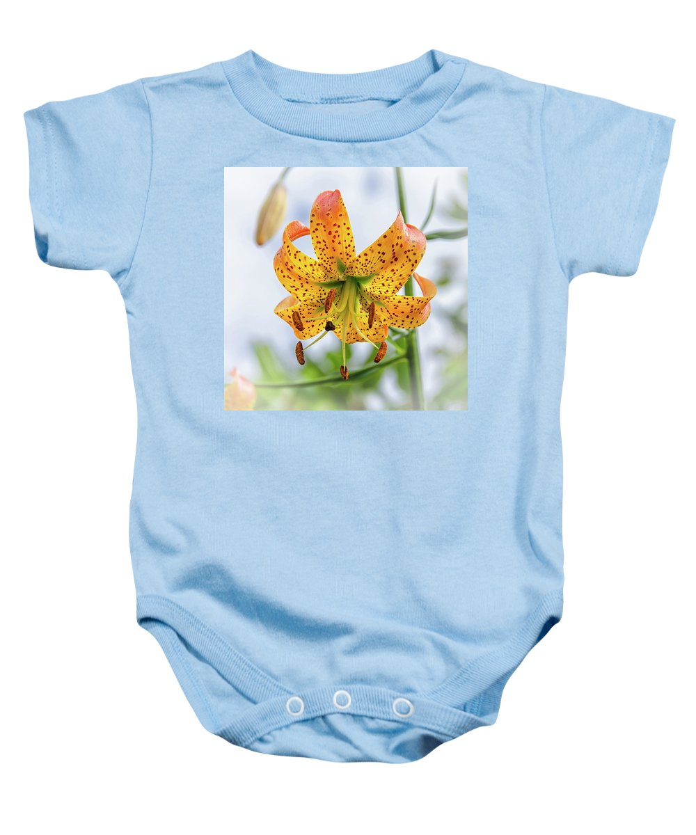 Blue Ridge Mountains Baby Onesie featuring the photograph Turk's Cap Lily by Kristina Plaas