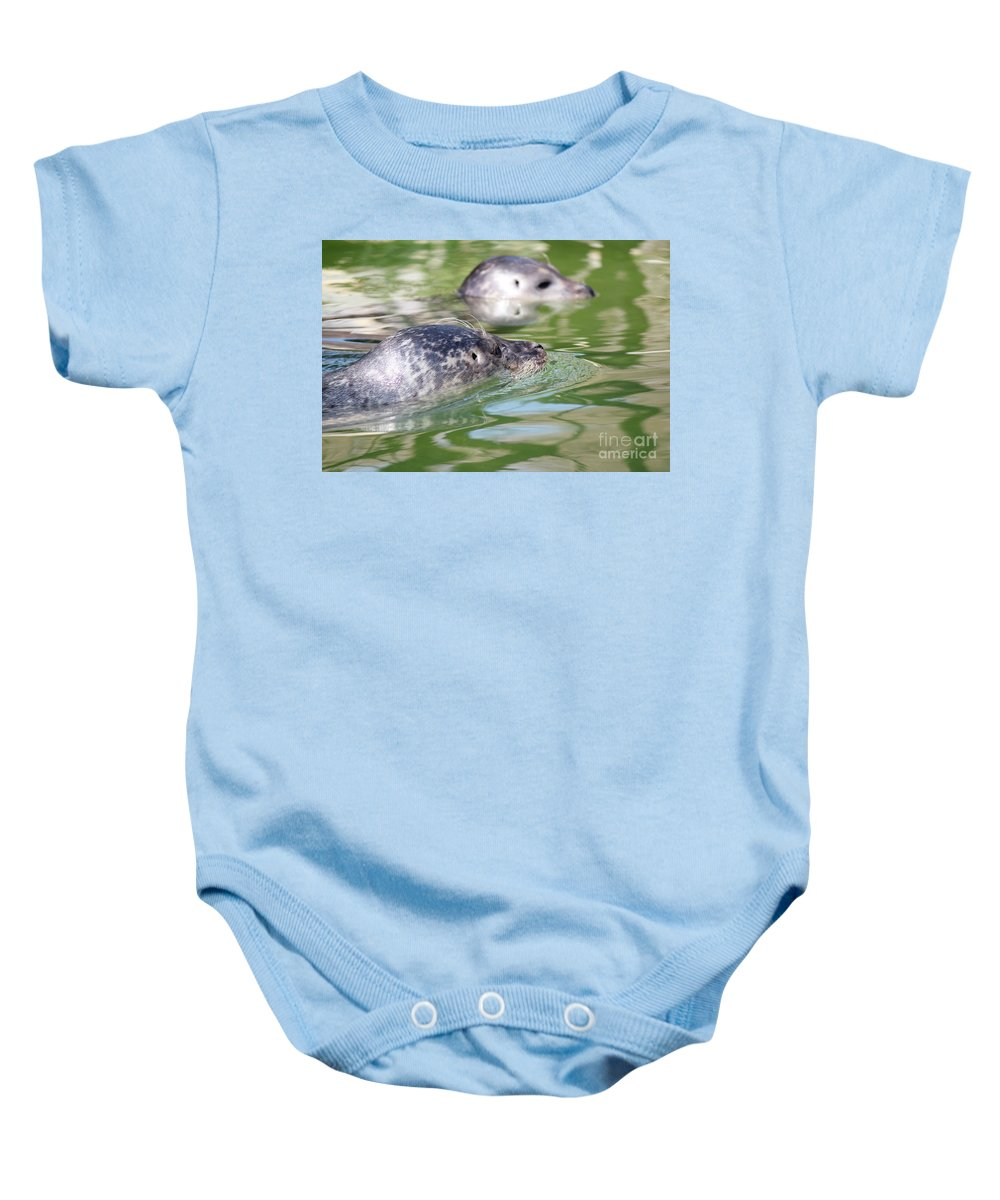 Phoca Baby Onesie featuring the photograph Two Seal Swimming Nature Scene by Goce Risteski