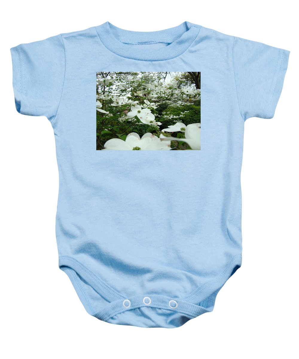 Dogwood Baby Onesie featuring the photograph White Dogwood Flowers 6 Dogwood Tree Flowers Art Prints Baslee Troutman by Baslee Troutman