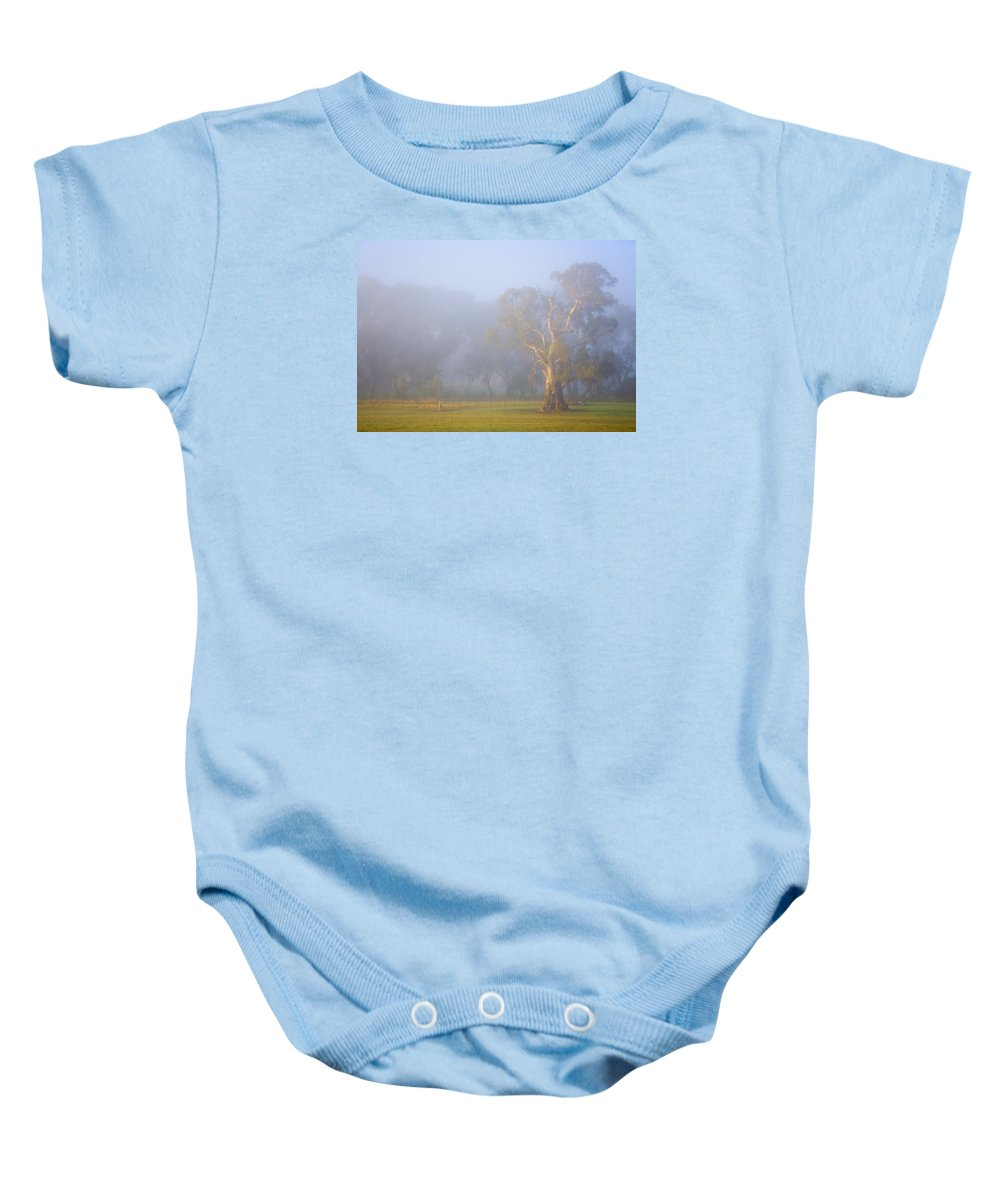 Tree Baby Onesie featuring the photograph White Gum Morning by Mike Dawson