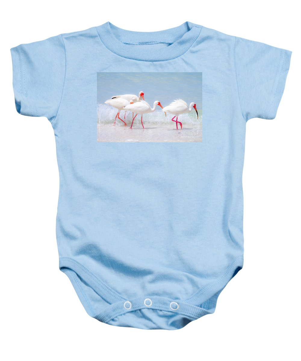 Ibis Baby Onesie featuring the photograph White Ibis Feeding 2 By Darrell Hutto by J Darrell Hutto