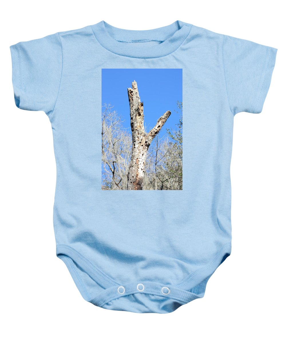Old Tree Baby Onesie featuring the photograph Woodpecker Was Here by Carol Groenen