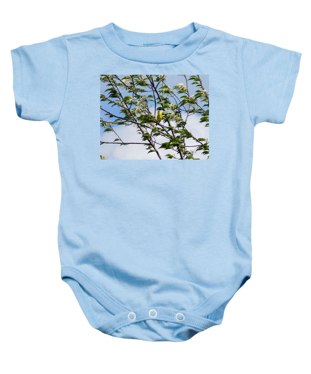 Yellow Finch Baby Onesie featuring the photograph Yellow Finch And Flowers by William Tasker