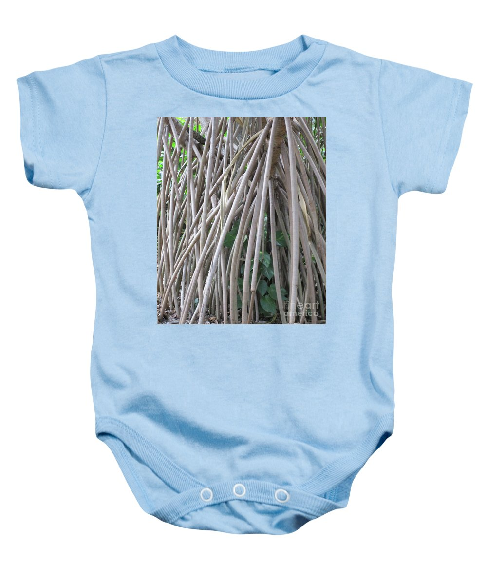 Foster Botanical Garden Baby Onesie featuring the photograph Foster Trees 6 by Randall Weidner