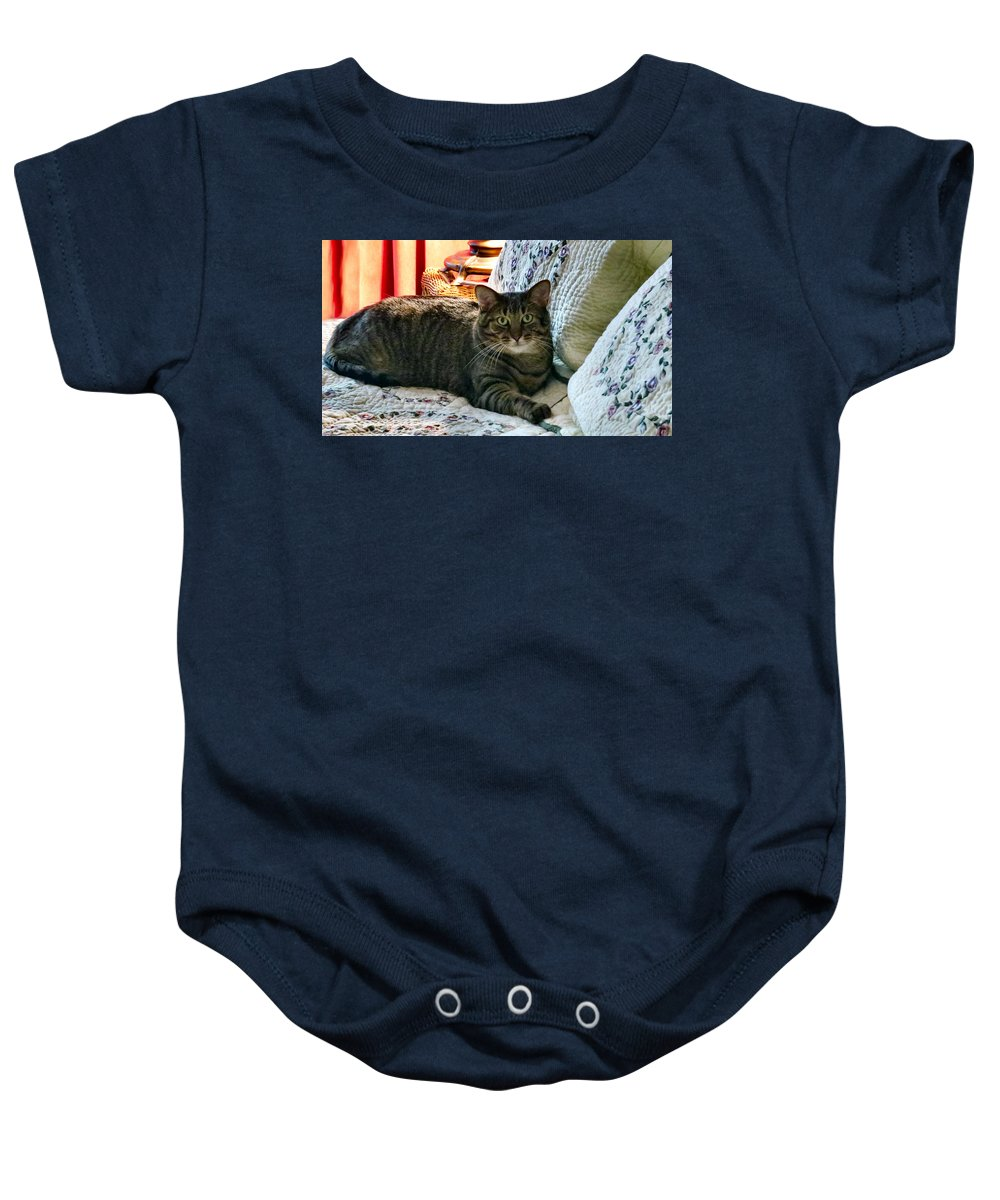 Cat Baby Onesie featuring the photograph Tubby by Art Dingo