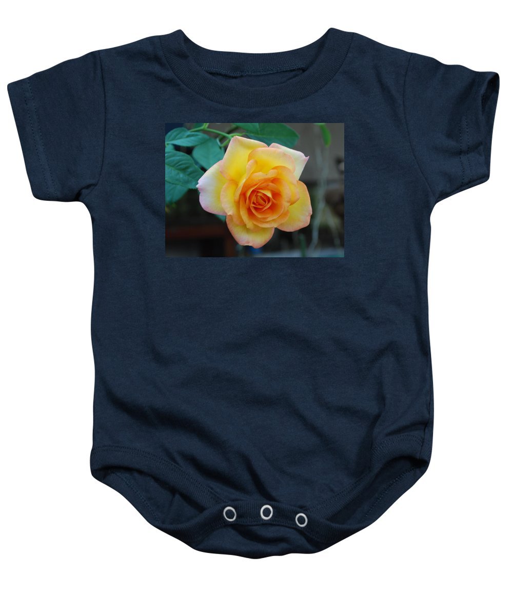 Pot Grown Baby Onesie featuring the photograph Rose by Robert Floyd