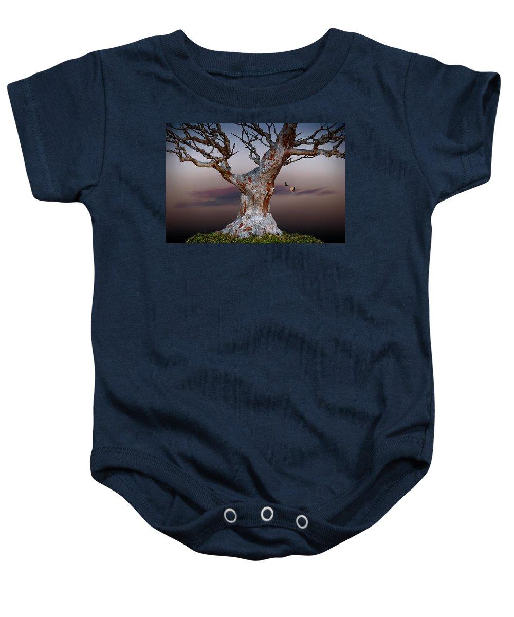 Arboretum Baby Onesie featuring the photograph As Night Settles by John Haldane