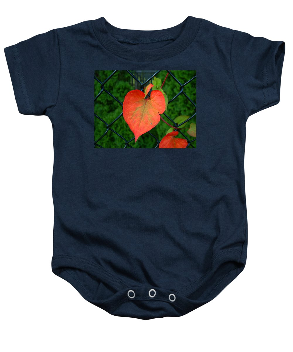 Vine Baby Onesie featuring the photograph Autumn In July by RC deWinter