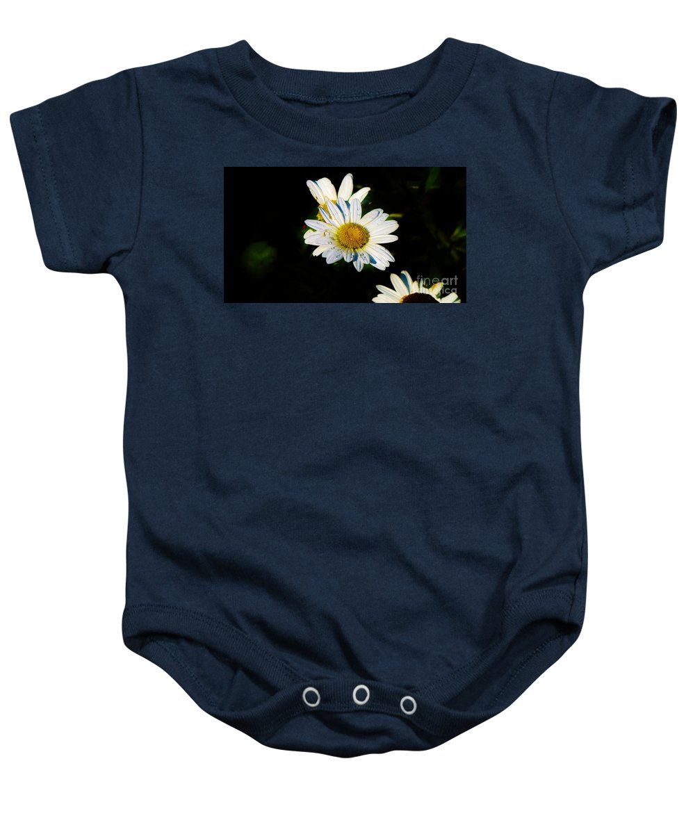 Daisy Baby Onesie featuring the photograph Bed Of Daisy's For Daisy by Keri West