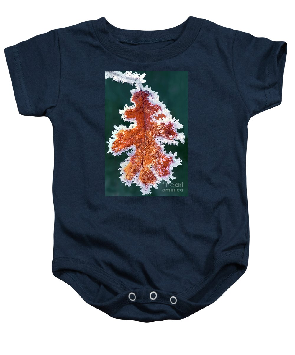 North America Baby Onesie featuring the photograph Black Oak Leaf Rime Ice Yosemite National Park California by Dave Welling