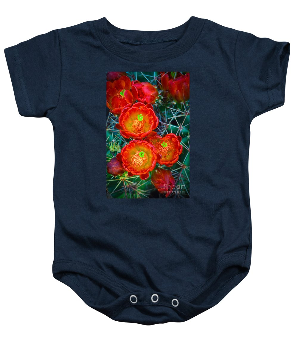 America Baby Onesie featuring the photograph Claret Cup by Inge Johnsson
