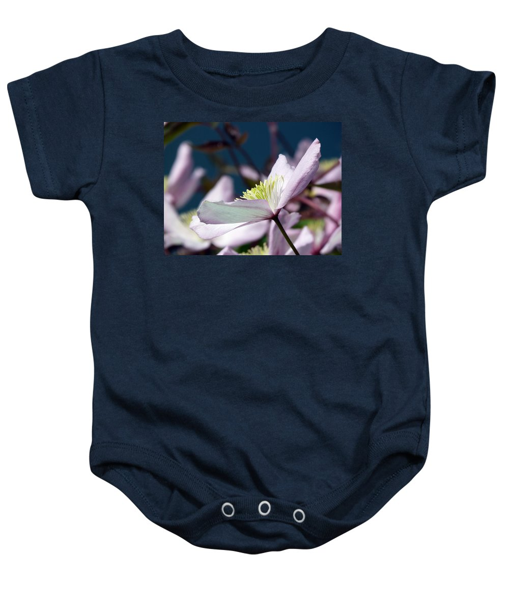 Clematis Baby Onesie featuring the photograph Clematis Montana by Lynn Bolt