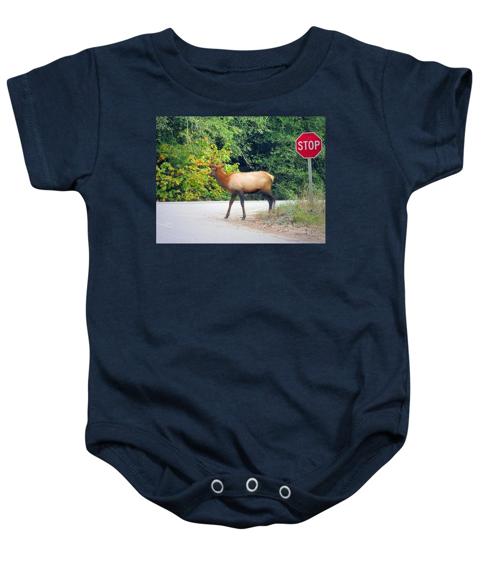 Elk Baby Onesie featuring the photograph Elk Right Of Way by Joyce Dickens