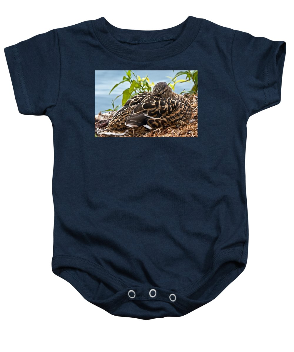 Anas Platyrhynchos Baby Onesie featuring the photograph Eye Watching You by Kate Brown