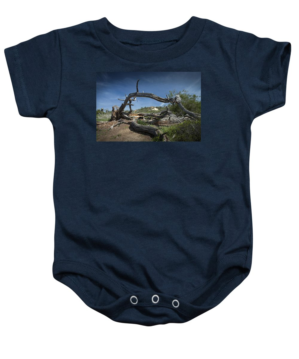 Art Baby Onesie featuring the photograph Fallen Dead Torrey Pine Trunk At Torrey Pines State Natural Reserve by Randall Nyhof