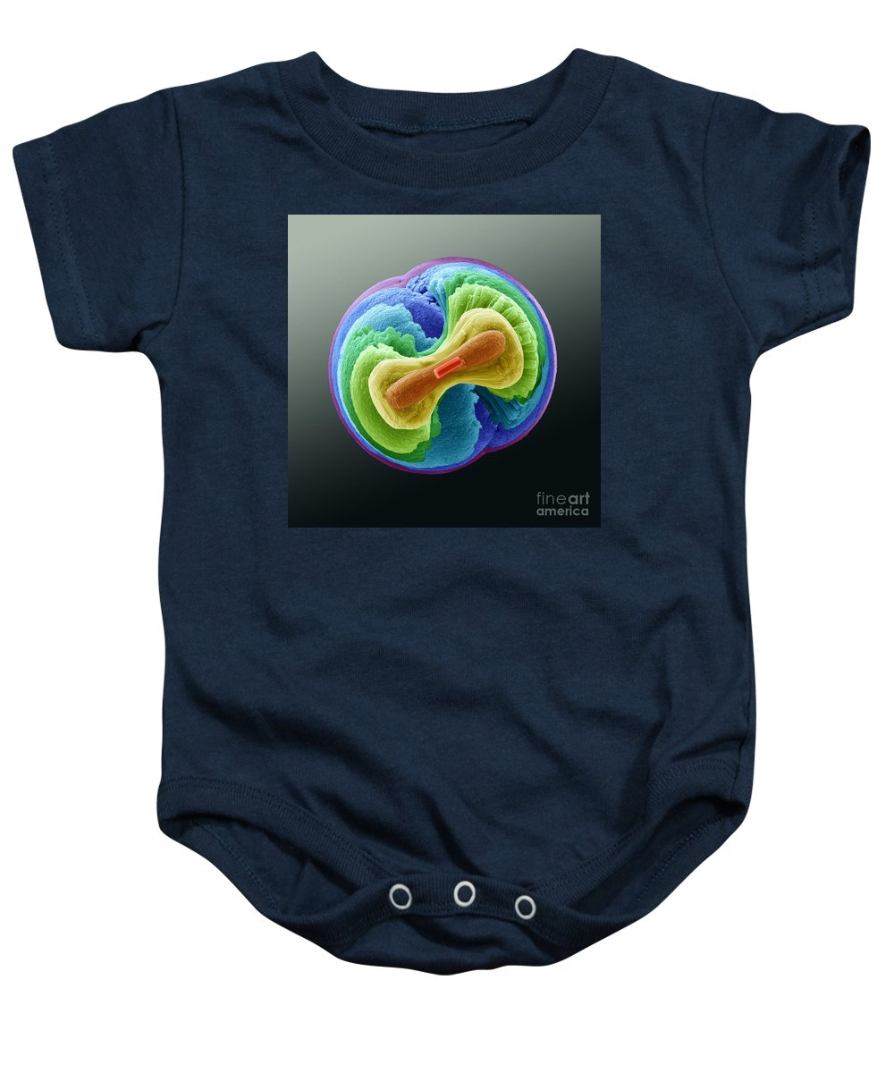 Geological Baby Onesie featuring the photograph Fluorapatite Crystal by Eye of Science