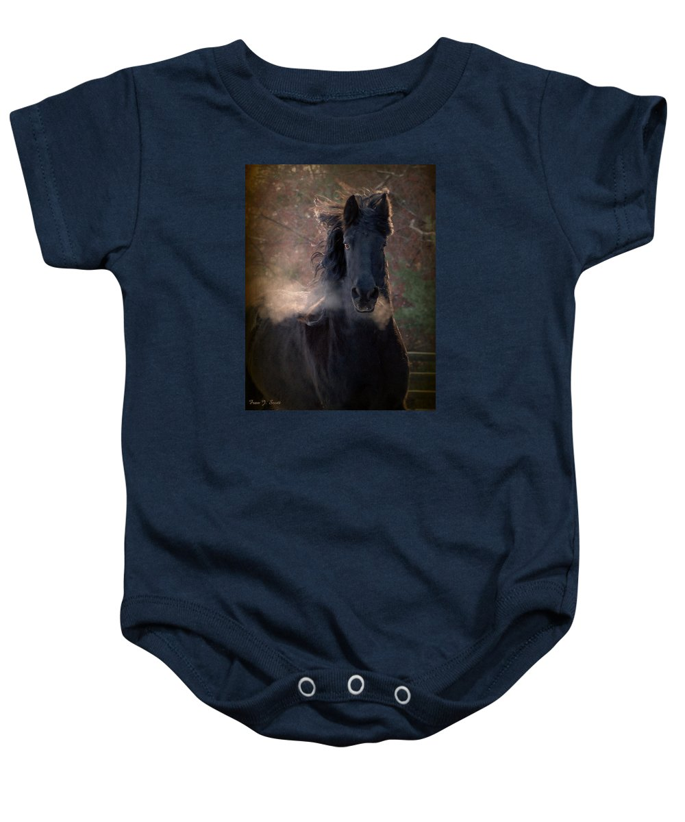 Horses Baby Onesie featuring the photograph Frost by Fran J Scott