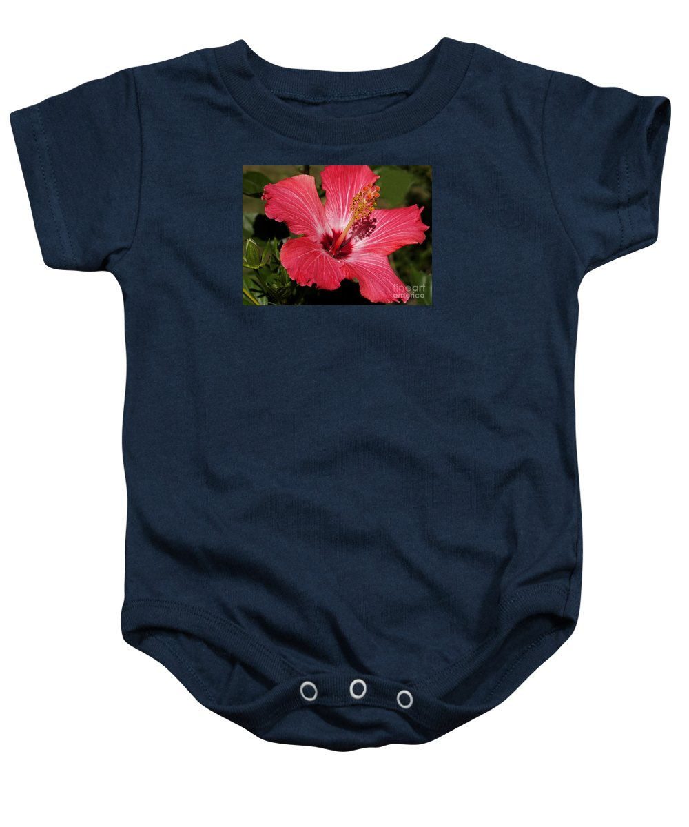 Hibiscus Baby Onesie featuring the photograph Garden Beauty by Ann Horn