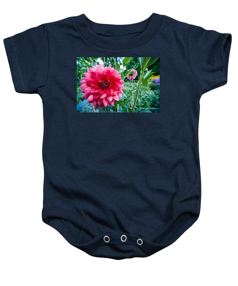 Bloom Baby Onesie featuring the photograph Garden Dahlia by Zina Zinchik