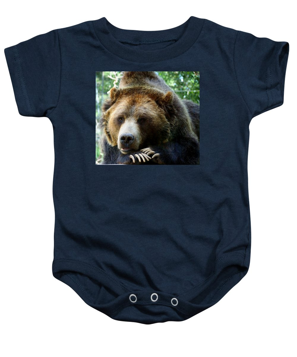 Nature Baby Onesie featuring the photograph Grizzly Bear At Rest In Colorado Wildneress by Amy McDaniel