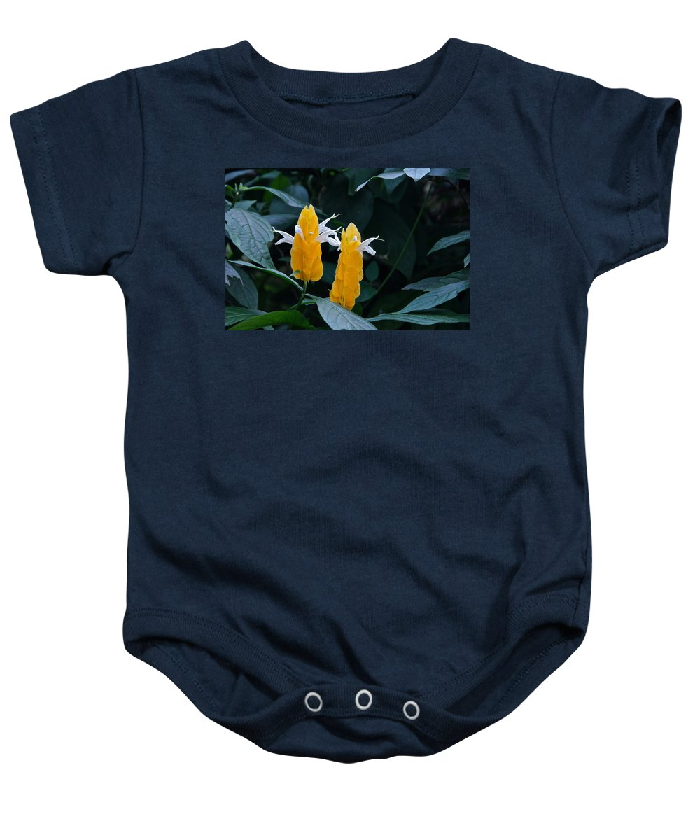 Blooming Pachystachys Lutea Baby Onesie featuring the photograph Hooray Lets Dance by Byron Varvarigos