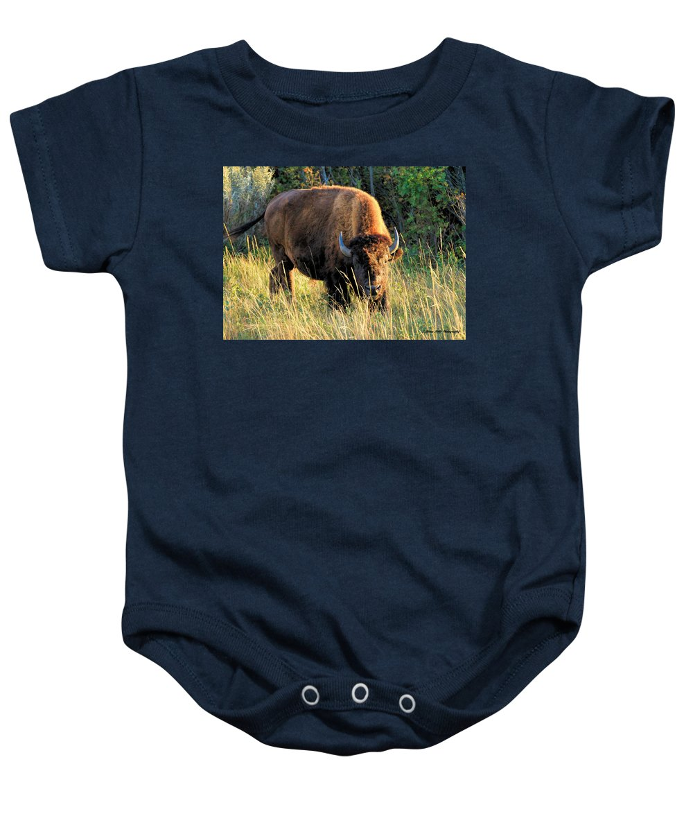 American Bison Baby Onesie featuring the photograph Just Me And You by Bruce Nikle