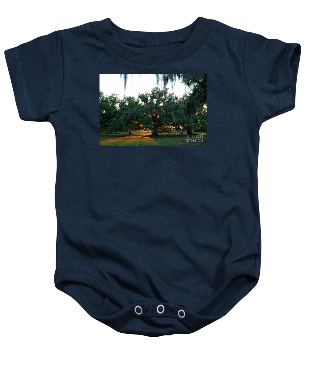 Shimmering Light Baby Onesie featuring the photograph Live Oak Bathed In Evening Light by Xyldia Grace