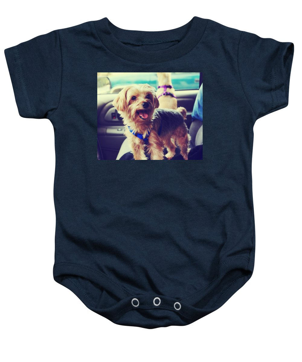 Dogs Baby Onesie featuring the photograph Molly's Road Trip by Laurie Search