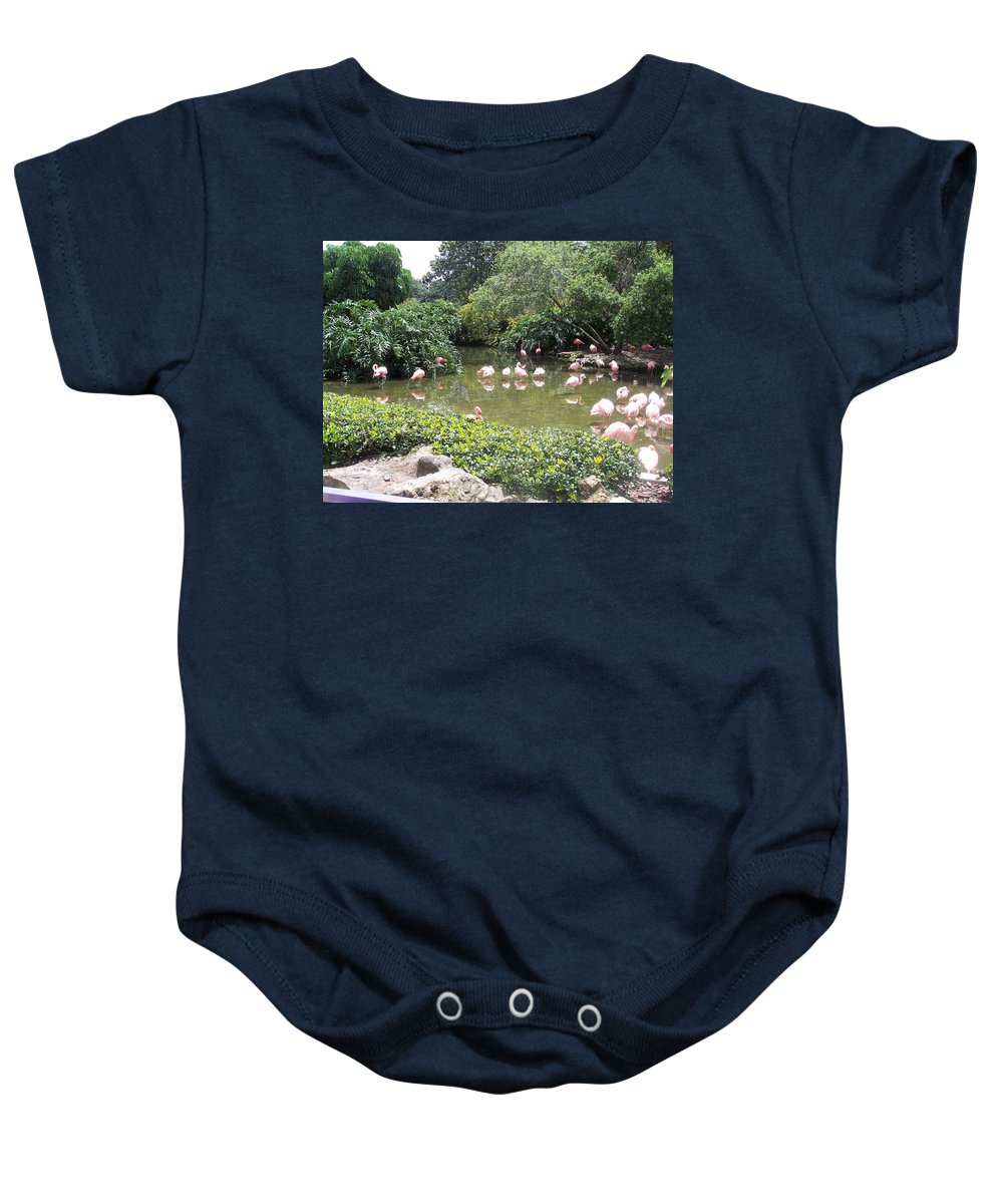 Flamingos Baby Onesie featuring the photograph More Pink Flamingos by Pharris Art