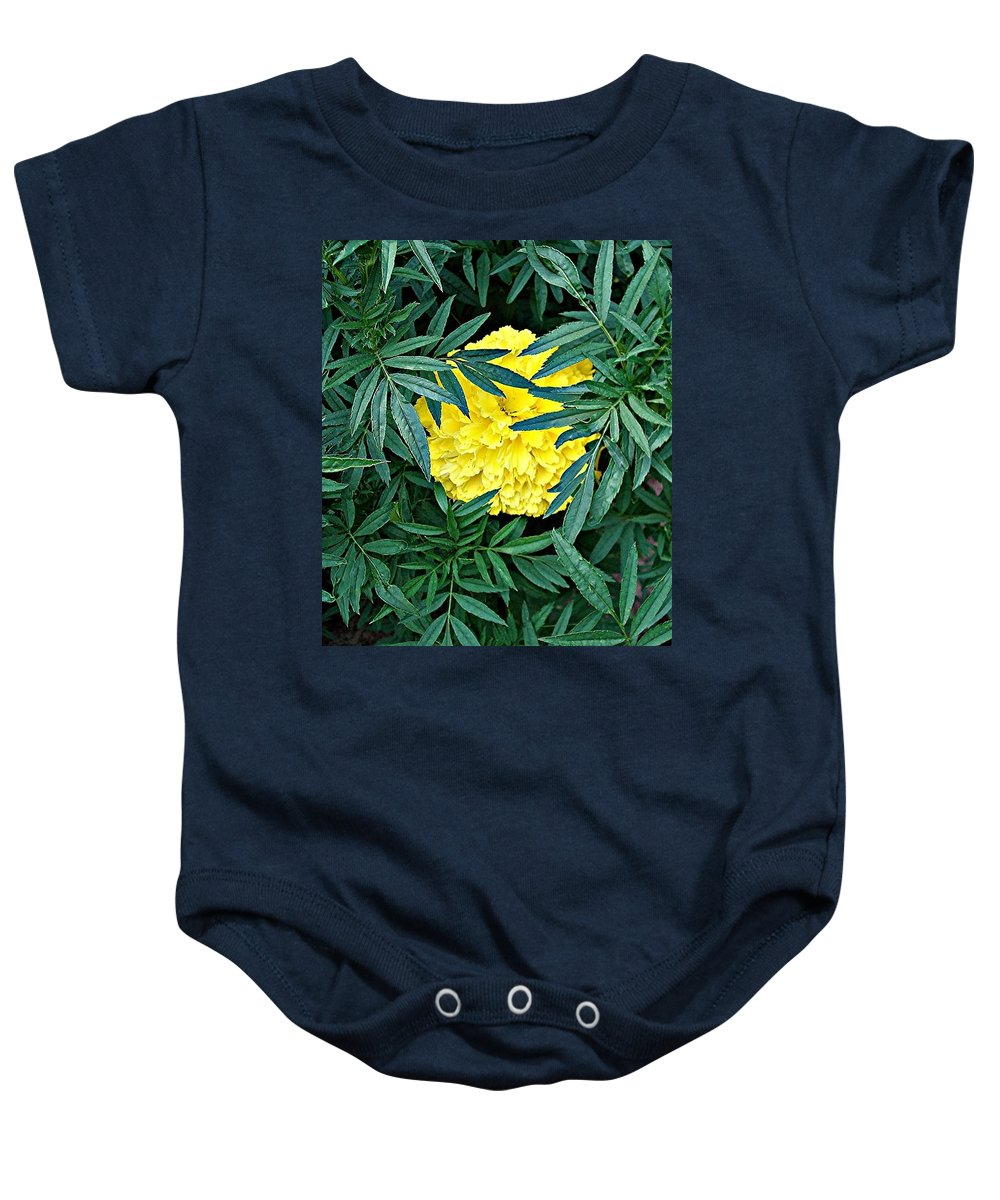 Flowers Baby Onesie featuring the photograph Peek-a-boo by Mary Marsh