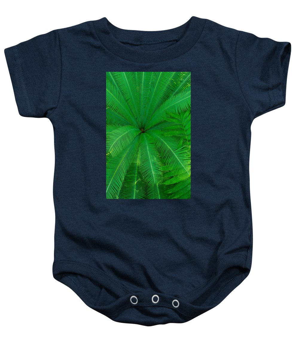 Us Botanic Garden Baby Onesie featuring the photograph Pool Of Fern by Leah Palmer