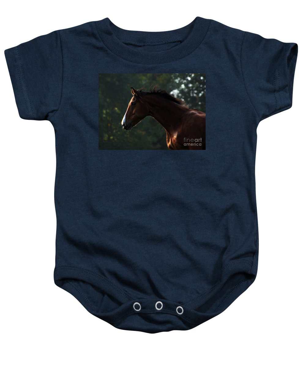 Horse Baby Onesie featuring the photograph Portrait Of A Horse by Angel Ciesniarska