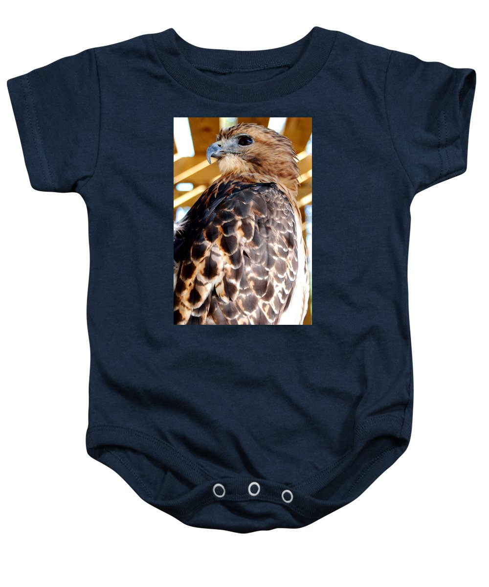 Red-tailed Hawk Baby Onesie featuring the photograph Red Tailed Hawk by Optical Playground By MP Ray