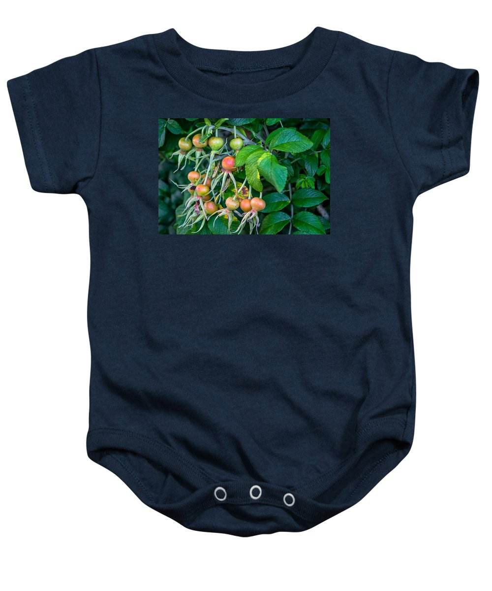 Bolton Baby Onesie featuring the photograph Ripe And Ready by Steve Harrington