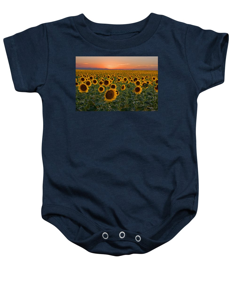 Sunflower Baby Onesie featuring the photograph Standing At Attention by Ronda Kimbrow