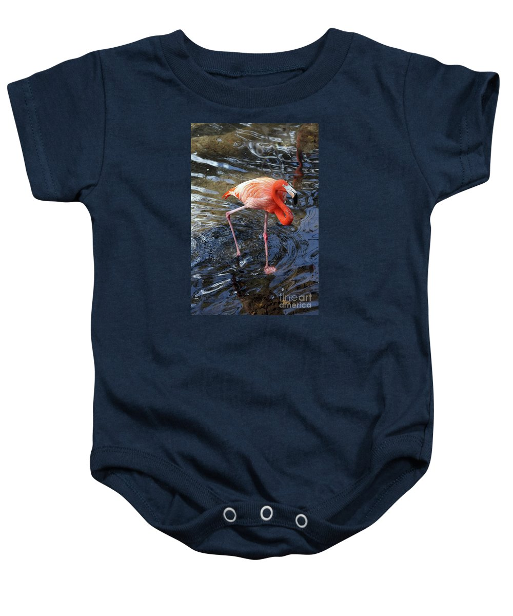 Flamingo Baby Onesie featuring the photograph Standing On Long Legs by Christiane Schulze Art And Photography