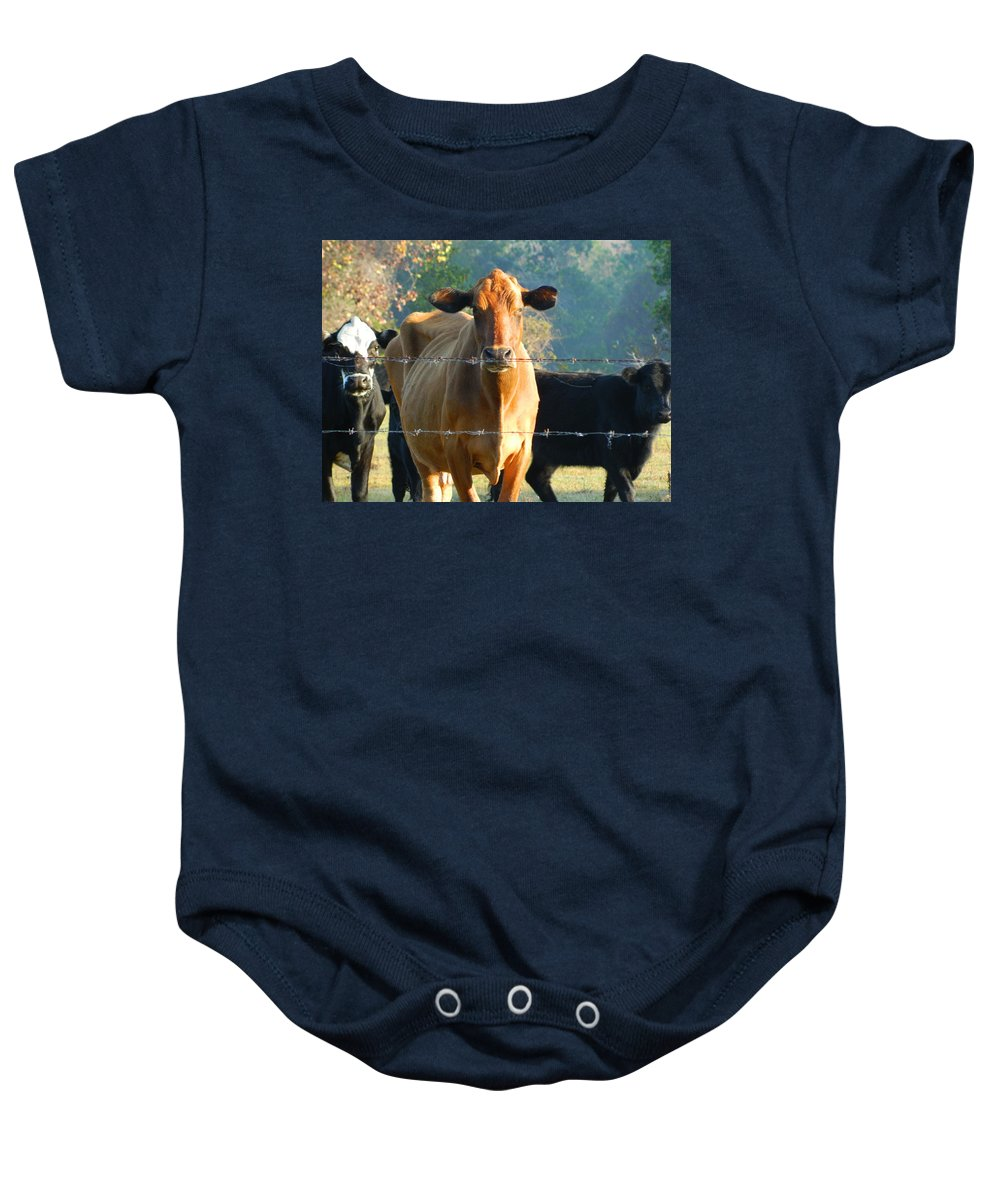 Cows Baby Onesie featuring the photograph the Defiant One by George Pedro