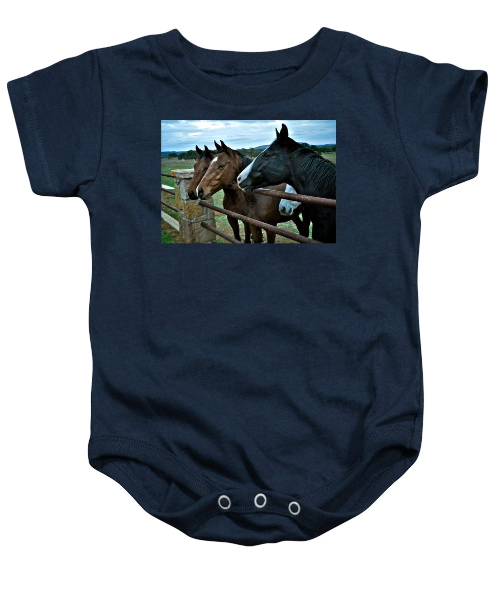 Three Horses Baby Onesie featuring the photograph Three Horses Waiting For Carrots by Kristina Deane