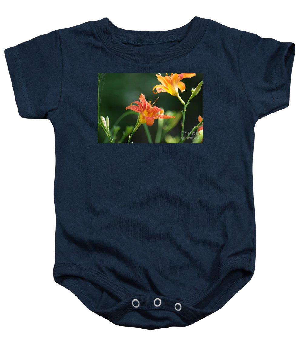 Orange Baby Onesie featuring the photograph Tiger Lily And Bud  # by Rob Luzier