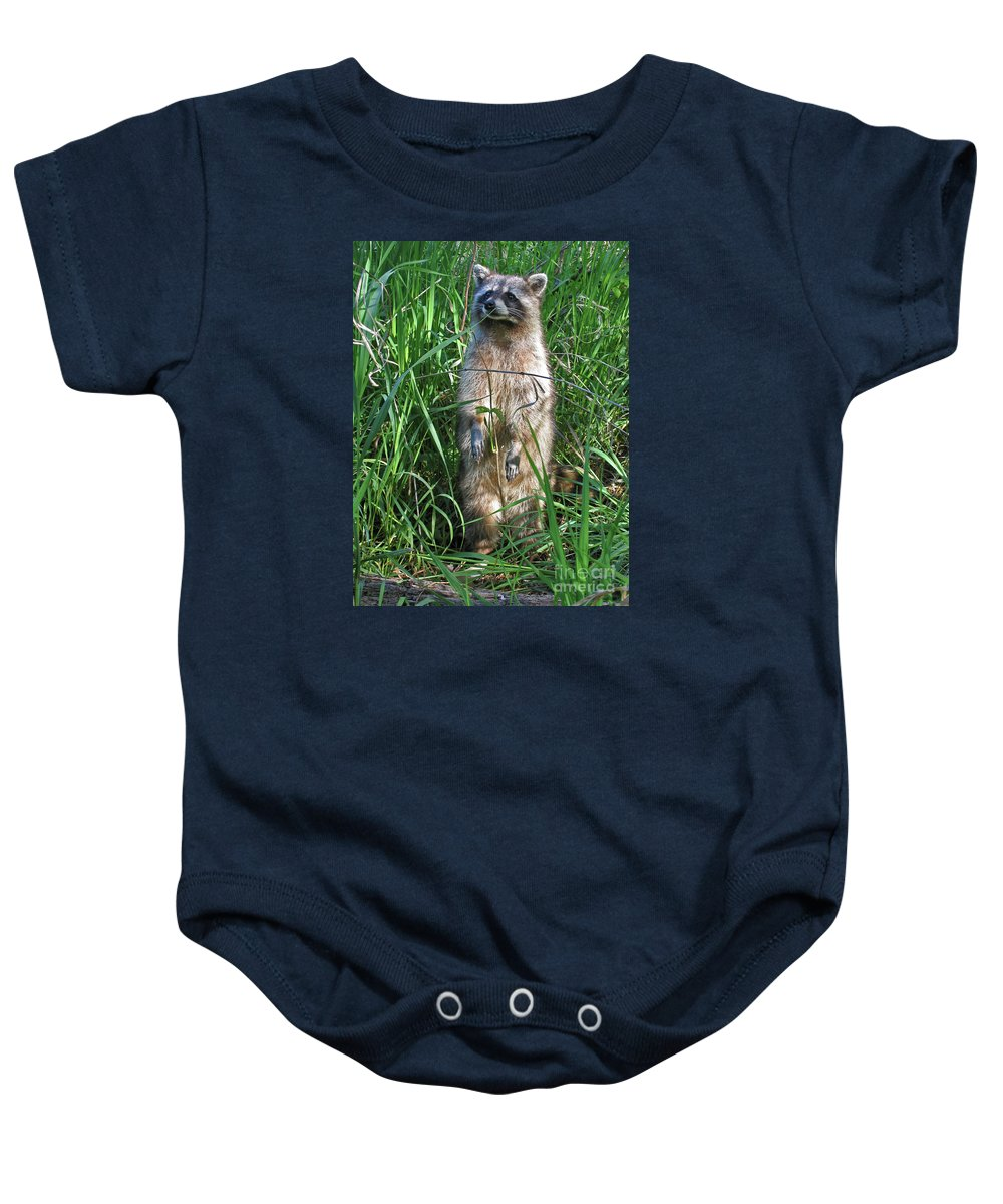 Raccoon Baby Onesie featuring the photograph Wary by Ann Horn