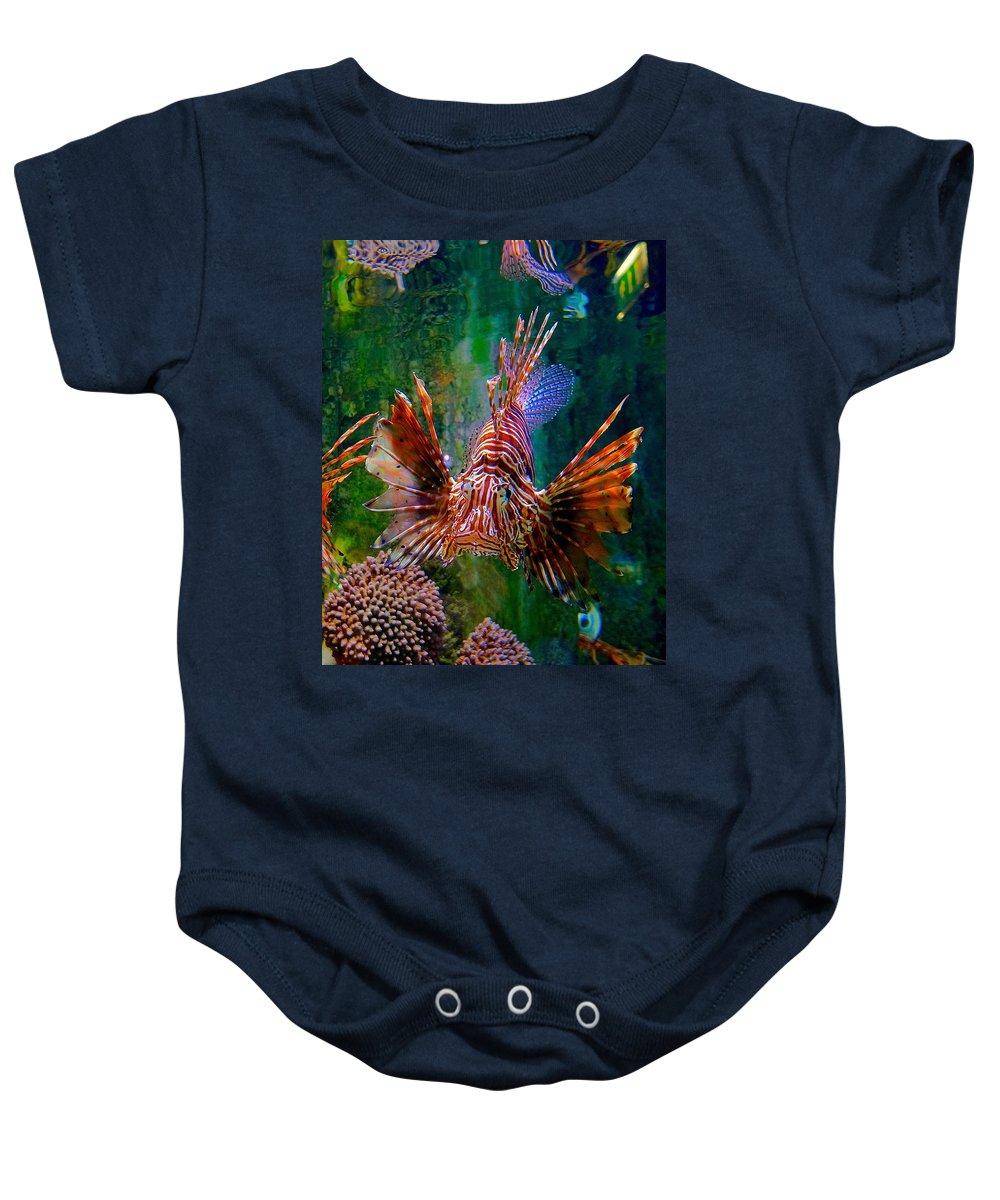 Lionfish Baby Onesie featuring the photograph What You Looking At by Tim G Ross