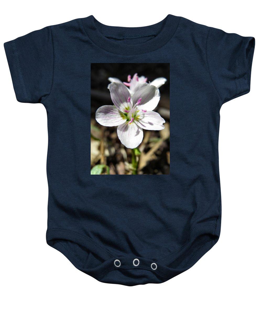 Wild Baby Onesie featuring the photograph Wildflower Sun Worship by Art Dingo