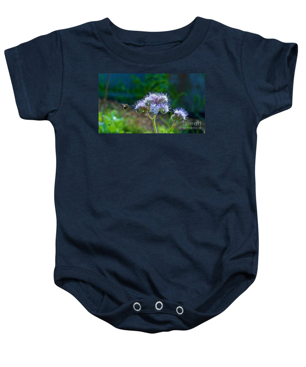 Bee Baby Onesie featuring the photograph Working For A Living by Lance Sheridan-Peel