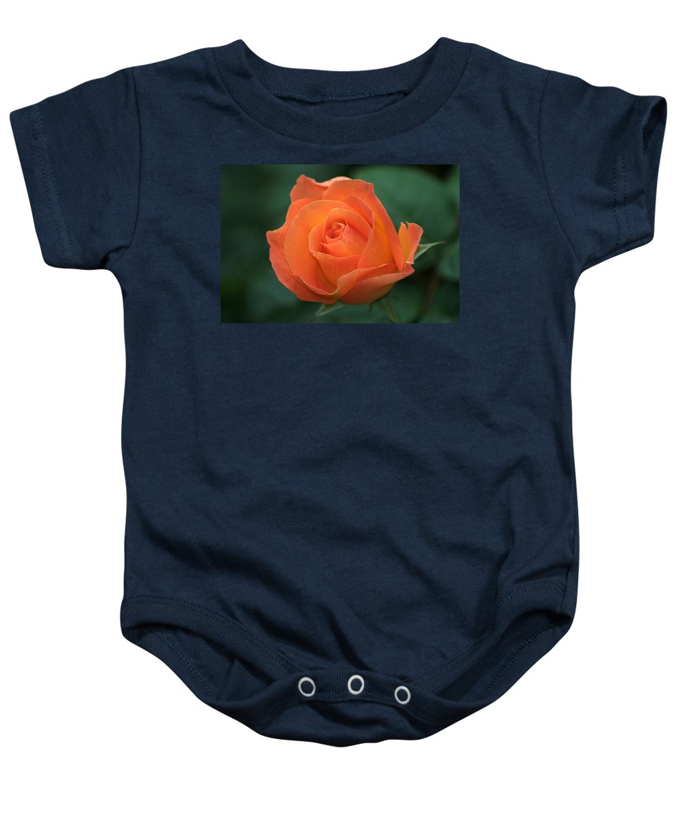 Orange Rose Baby Onesie featuring the photograph Orange Rose by Chris Day