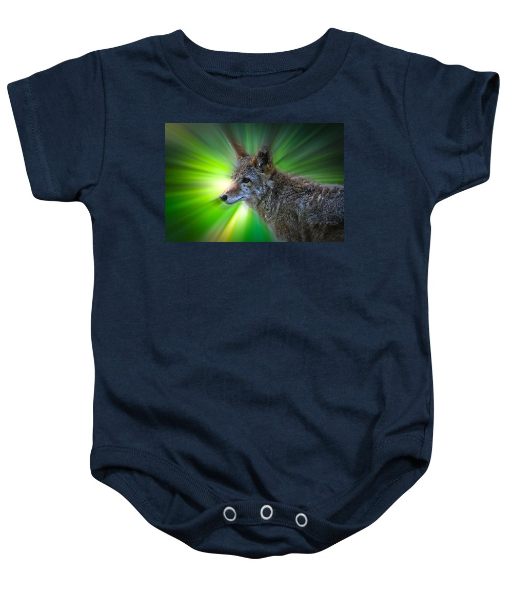 Coyote Baby Onesie featuring the photograph Coyote by Steve McKinzie