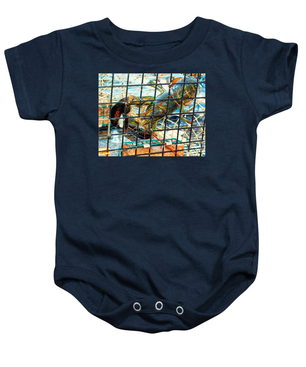 Traps Baby Onesie featuring the photograph American Lobster In Trap In Chatham On Cape Cod by Matt Suess